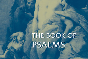 Review of The Book of Psalms by Nancy deClaissé-Walford, Rolf A. Jacobson, and Beth LaNeel Tanner